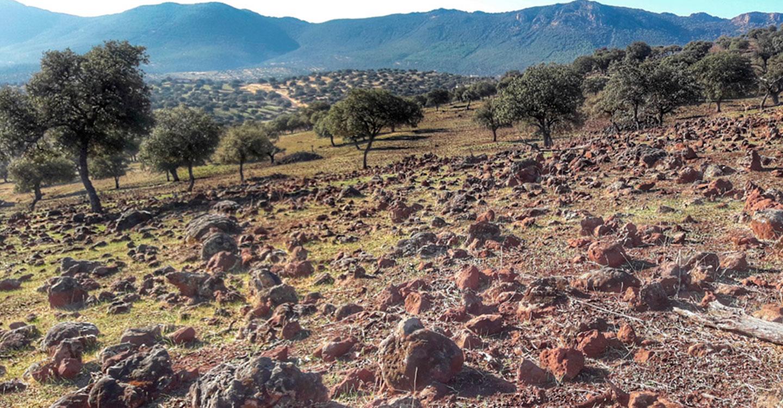 """El vulcanismo manchego: """"Valle de Alcudia"""""""