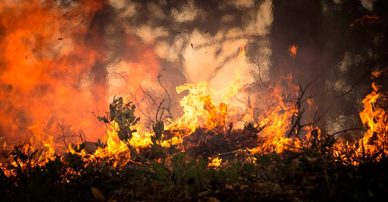 CCOO denuncia que Geacam reduce 22 días la campaña de extinción de incendios de este verano