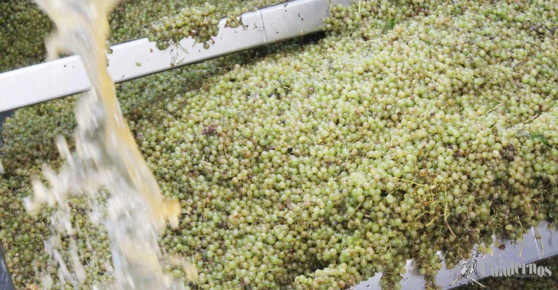 Firmado el convenio de Industrias Vinícolas de Albacete con una subida salarial del 4% en dos años