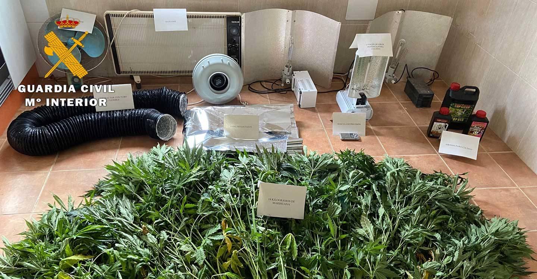 La Guardia Civil detiene a una persona y desmantela un punto de cultivo indoor de cannabis sativa