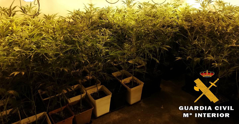La Guardia Civil detiene a siete personas por tráfico de drogas, detención ilegal y extorsión a dos jóvenes de Alpera