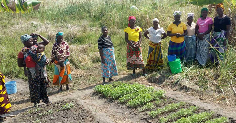 Medicina de Albacete y la ONG Maná colaboran en un proyecto para abastecer de agua a un instituto agrario en Mozambique