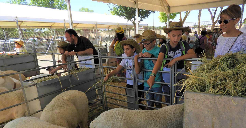 Ganaderos por un día' enseña a los menores el funcionamiento del sector primario en FERCAM