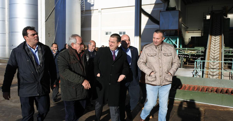 El Gobierno regional destaca la fortaleza del sector oleico en Castilla-La Mancha y su capacidad de negociar en los mercados en beneficio de los 83.000 oleicultores
