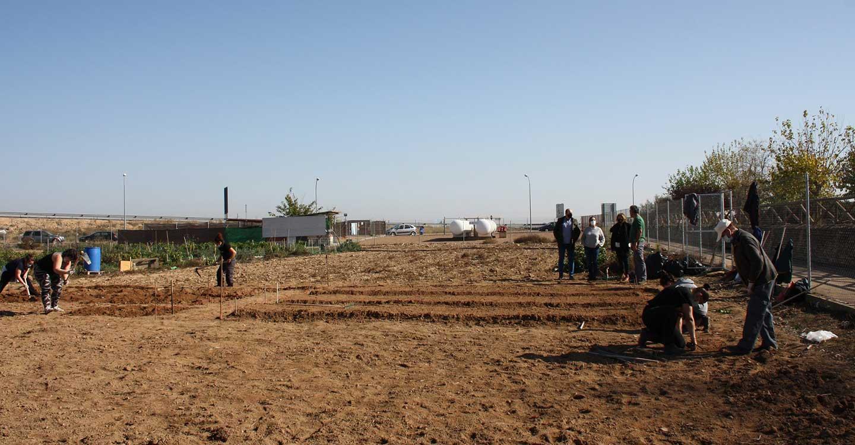 Ocho alumnos se reciclan profesionalmente en la Escuela de Agroecocultura de Torralba de Calatrava