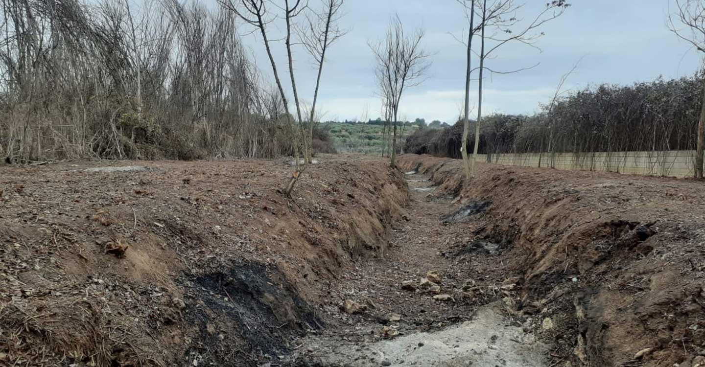 El Área de Medio Ambiente de Izquierda Unida Valdepeñas secunda las críticas de Ecologistas en Acción por la limpieza de cauce llevada a cabo en el arroyo del Peral.