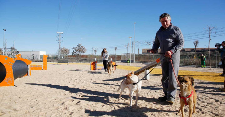 El Centro Municipal Canino de Valdepeñas, protagonista del proyecto de intercambio 'Amor es una palabra de 4 patas'