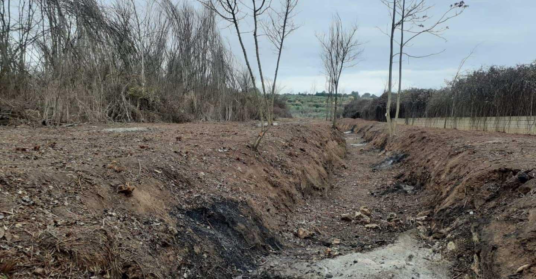 Ecologistas en acción denuncia que el Ayuntamiento de Valdepeñas y La Confederación Hidrográfica del Guadiana destruyen otro tramo de ribera