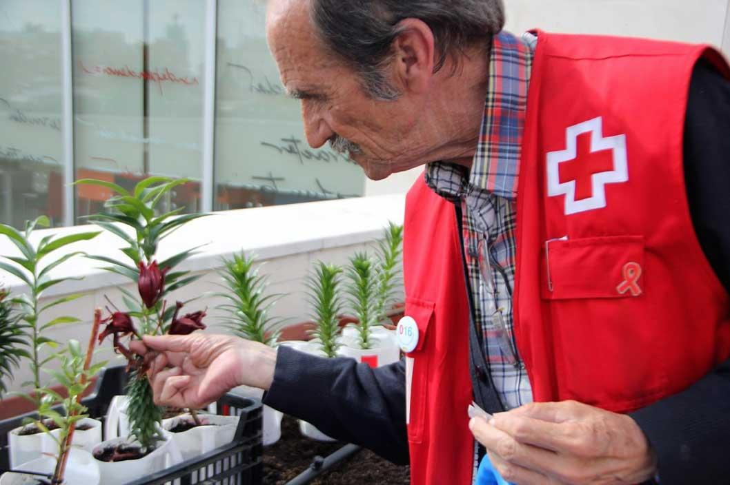 Cruz Roja resalta la importancia de visibilizar aportaciones de las personas mayores en el Día Internacional de las Personas de Edad