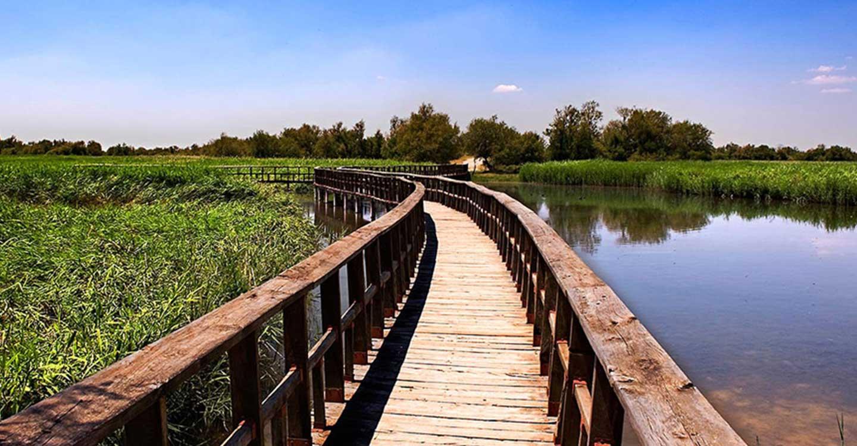 Ecologistas en Acción advierte sobre los negativos efectos de que Castilla-La Mancha gestione los parques nacionales de Daimiel y Cabañeros.