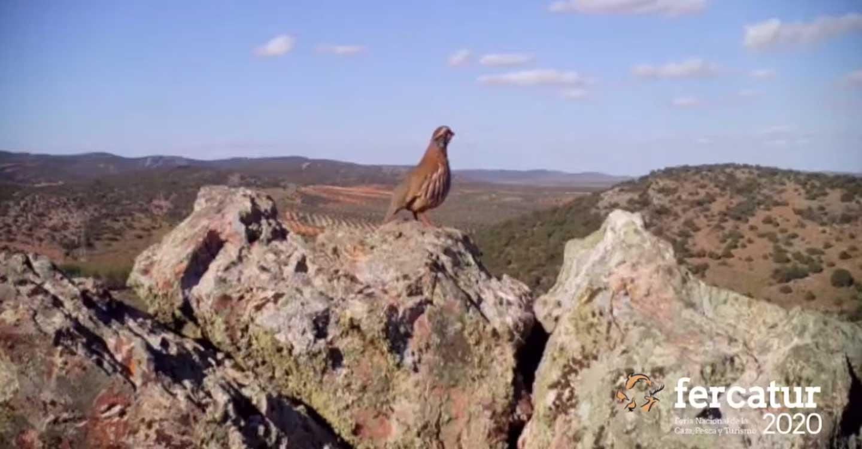 FERCATUR ensalza el fuerte vínculo entre caza y sostenibilidad