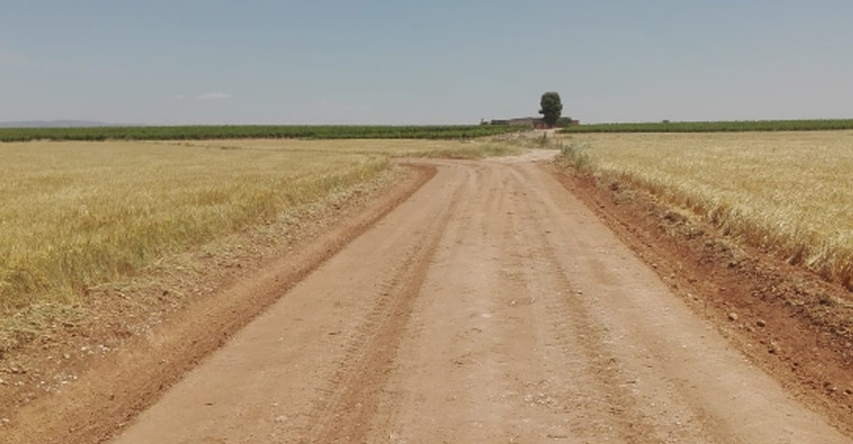 Finalizado el arreglo de más de 8,5 kilómetros de caminos rurales de Torralba de Calatrava