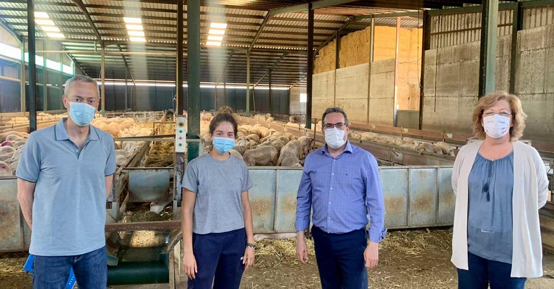 El Gobierno de Castilla-La Mancha pone 100 millones de euros a disposición de jóvenes que quieran poner en marcha su explotación agropecuaria