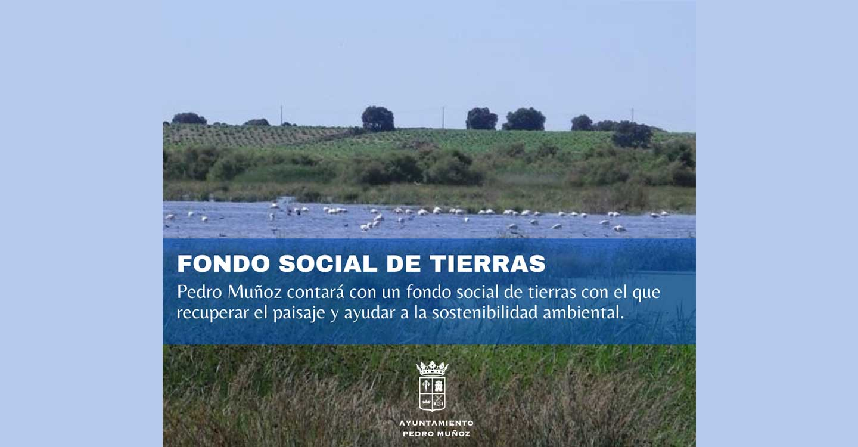 Pedro Muñoz contará con un fondo social de tierras con el que recuperar el paisaje y ayudar a la sostenibilidad ambiental