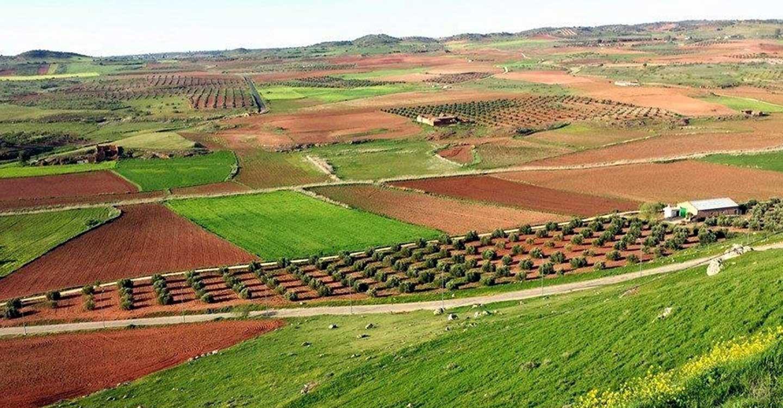 Tierras de Libertad aprueba una nueva convocatoria Leader de casi 900.000 euros