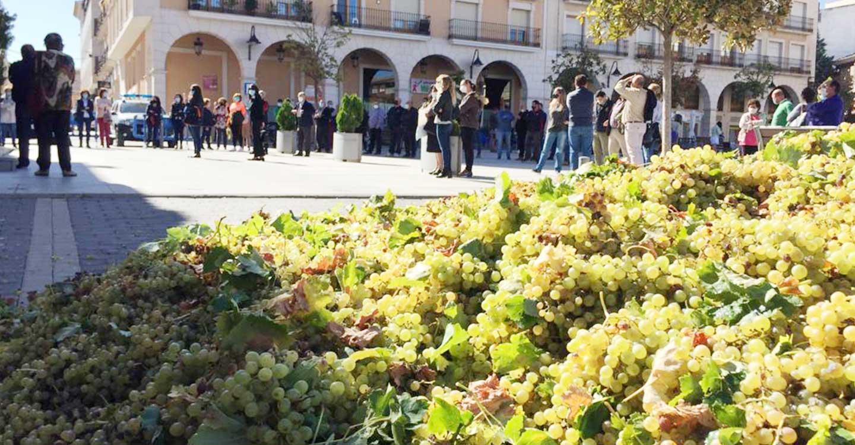 Las uvas por los suelos para hacer visible la situación de los viticultores y reivindicar precios justos