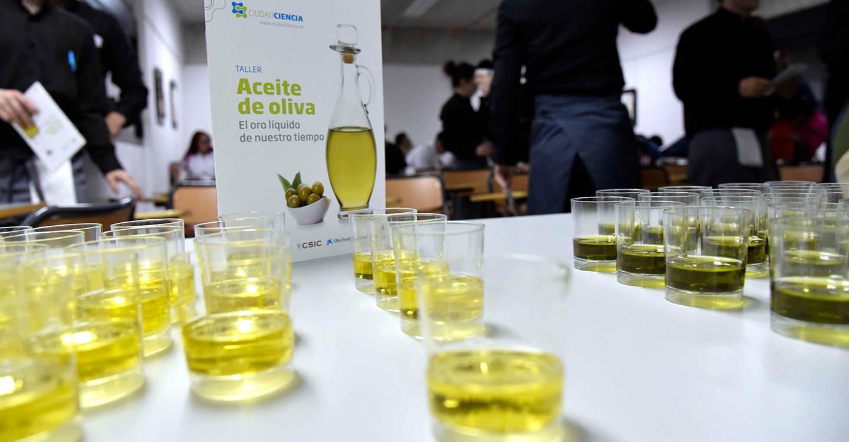 Villarrubia de los Ojos incluye un taller-cata sobre el aceite de oliva y una charla acerca del suelo en su agenda cultural de mayo