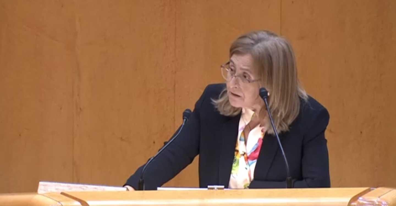 """Torralba: """"la universidad debe estar vertebrada por una política de igualdad de oportunidades y con el gobierno de Sánchez esto va a ser así"""""""