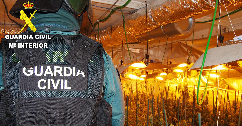 La Guardia Civil detiene a dos personas por cultivar marihuana en Pioz