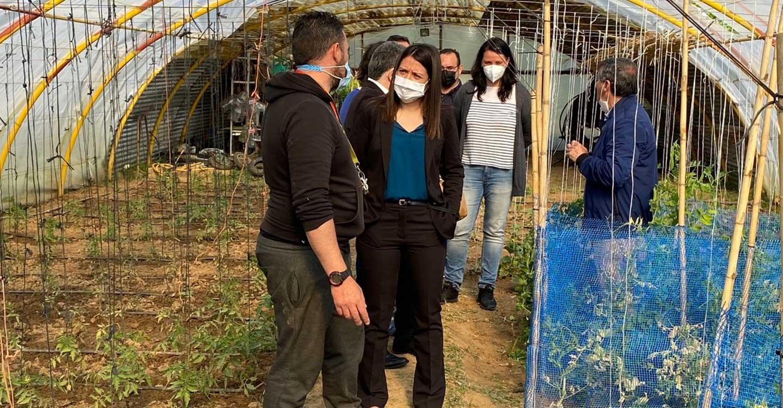 El Gobierno de Castilla-La Mancha facilita la protección de mujeres en riesgo de exclusión social con la colaboración de Proyecto Hombre