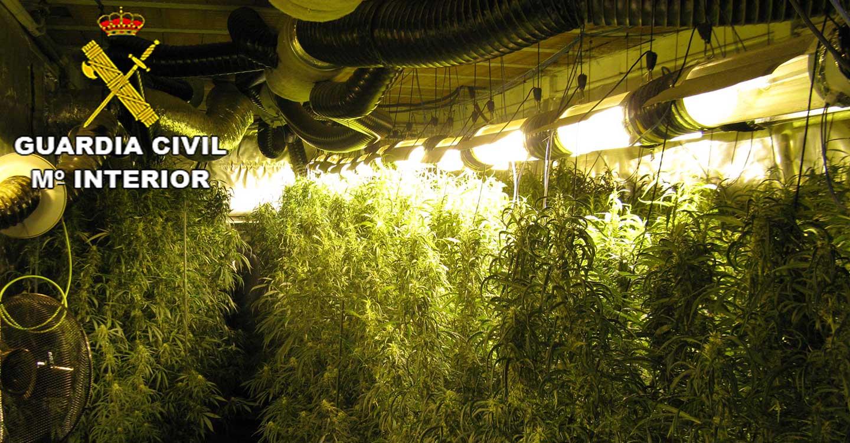 La Guardia Civil de Guadalajara detiene a dos personas por cultivar marihuana en Azuqueca de Henares