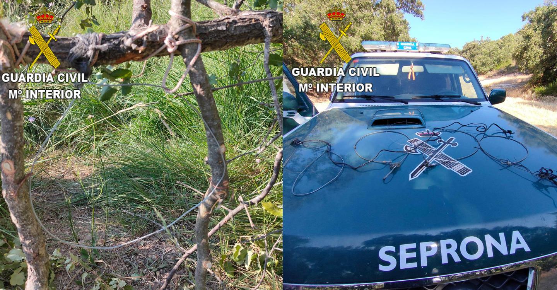 El SEPRONA continúa trabajando contra la caza ilegal y el uso de medios prohibidos