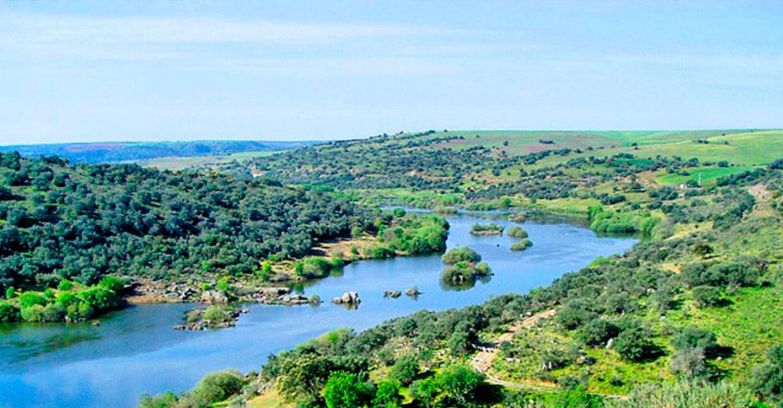 Presentado el Programa de Actuación de la Masa de Agua Subterránea de Tierra de Barros en la Junta de Gobierno de la Confederación Hidrográfica del Guadiana