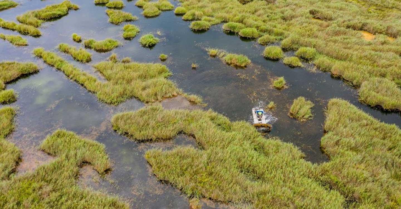 Los humedales, la pieza clave para alcanzar la neutralidad climática en 2050