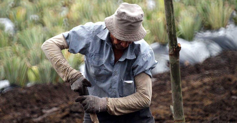 Unión de Uniones echa en cara a Trabajo que siga poniendo al campo en el centro de la diana de sus inspecciones