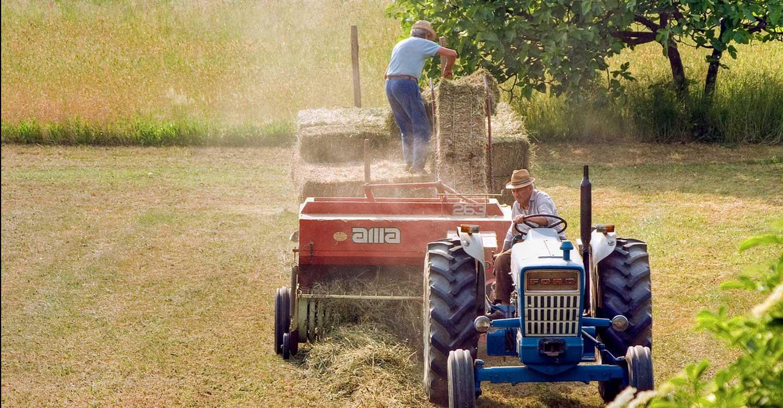Unión de Uniones pide al Ministerio que el Plan Renove 2021 cumpla la ley de modernización agraria