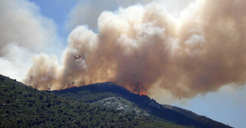 Unión de Uniones alerta del aumento de incendios con respecto a 2020 y pide precaución, tanto al sector como a la sociedad en general