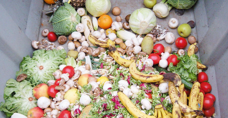 El Ayuntamiento de Toledo se suma este miércoles a la marea verde contra el desperdicio alimentario en su Día Internacional