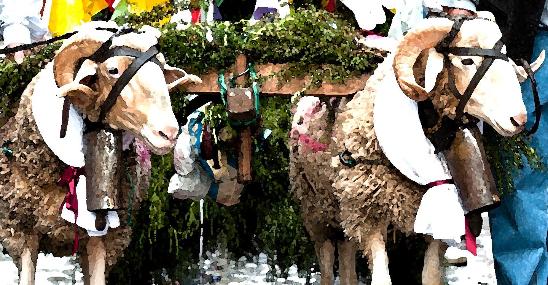Fiestas populares manchegas (6)