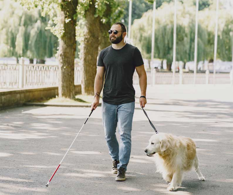 El Gobierno de Castilla-La Mancha inicia el proceso de participación ciudadana del decreto que desarrolla la Ley de acceso al entorno de las personas con discapacidad acompañadas de perros