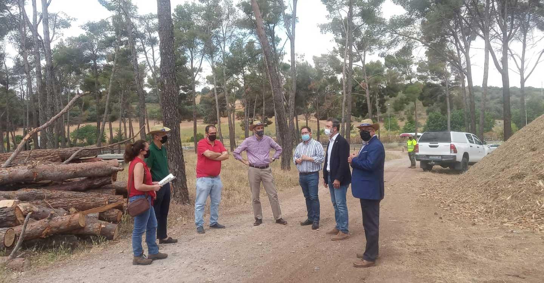 El Gobierno de Castilla-La Mancha destaca la progresiva recuperación de los montes públicos de Toledo tras la inversión de 340.000 euros para paliar los desperfectos causados por Filomena