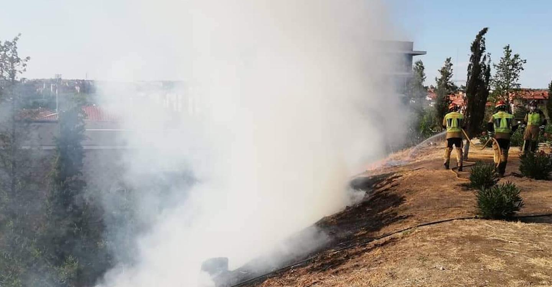 Los bomberos de Toledo sofocan un nuevo incendio registrado en el Parque de la Vega