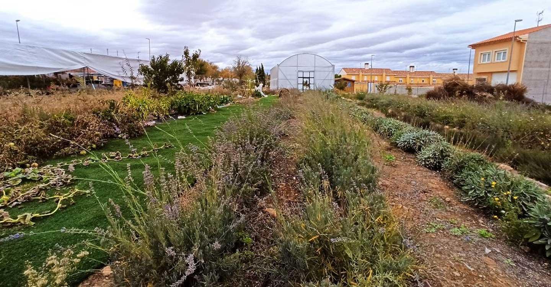 Mejorar el paisaje agrario a favor de la agricultura y la biodiversidad