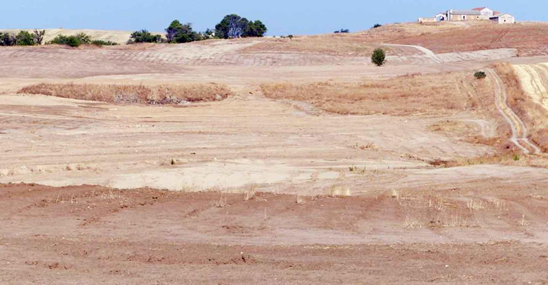 Ecologistas en acción reclama a AESA que la paralización de las obras del aeródromo de Chozas de Canales sea definitiva