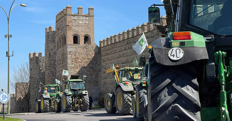 Unión de Uniones de Castilla-La Mancha considera que el Consejero tiene que plantear ya medidas para el olivar y los daños cinegéticos