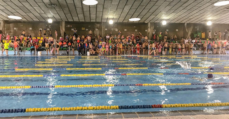 300 Escolares de Tomelloso participan en la Olimpiada de Natación