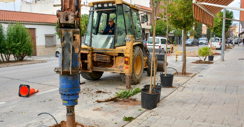 En marcha trabajos de reposición de arbolado en la calle Oriente