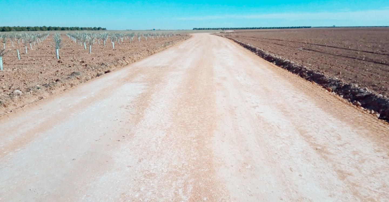 El trabajo del concejal de Agricultura, Álvaro Rubio, propicia el arreglo del Camino Real también en el término de Socuéllamos