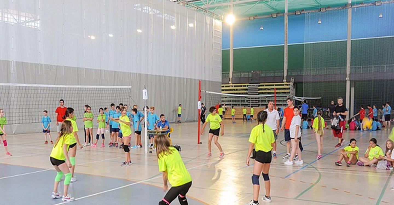 Comienza el plazo de preinscripción para Escuelas Deportivas y Programa de Adultos en Tomelloso