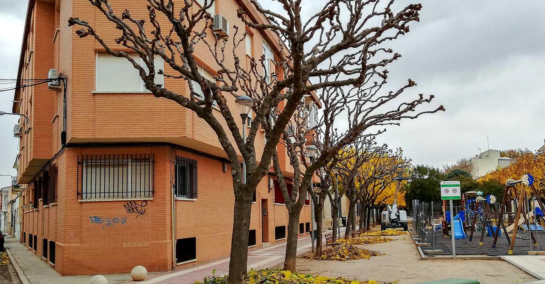 El área municipal de Parques y Jardines realiza trabajos de poda en diferentes zonas verdes de Tomelloso