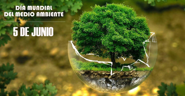 La Asociación de Vecinos del Barrio de San Juan de Tomelloso celebran el Día Mundial del Medio Ambiente