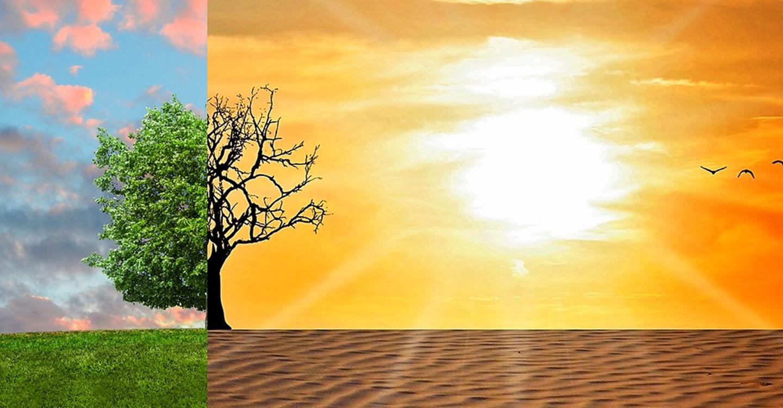 La crisis climática une a la juventud de Tomelloso.