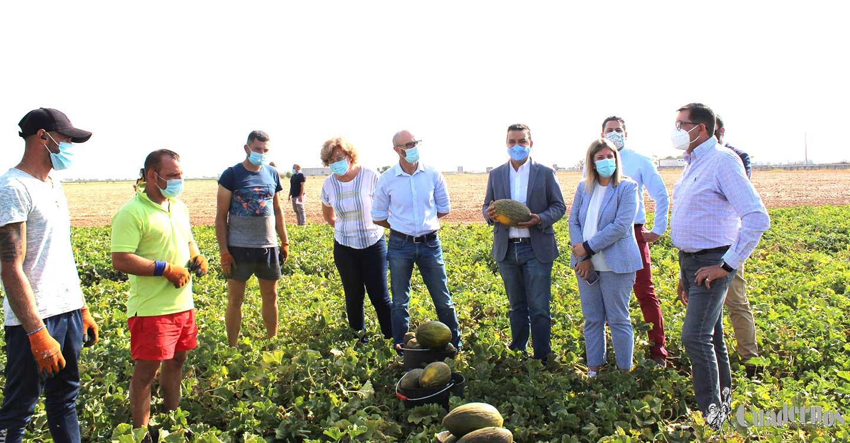 """Francisco Martínez Arroyo : """"Los agricultores y todos los trabajadores hacen que Castilla-La Mancha vuelva a ser un líder en los mercados del melón y la sandía"""""""