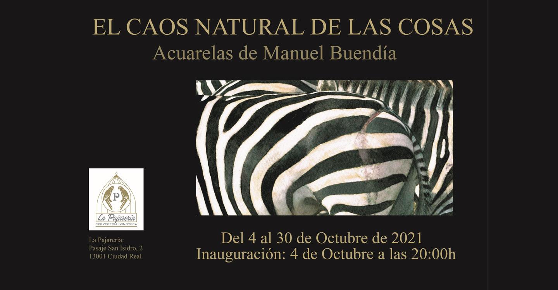"""Manuel Buendía presenta en Ciudad Real la Exposición titulada : """"El caos natural de las cosas"""""""