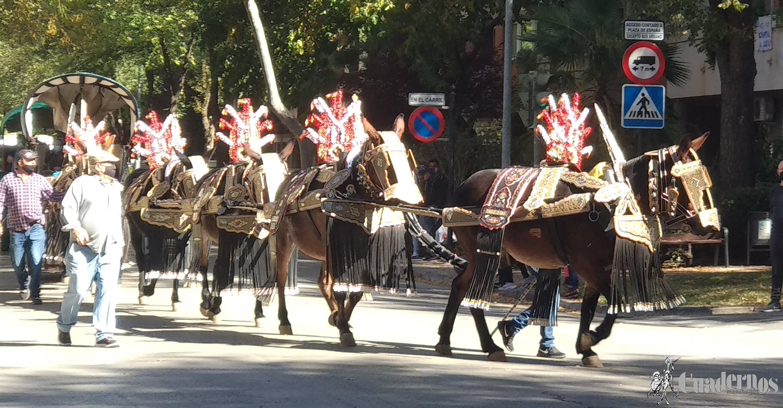 Tomelloso celebra el día del Pilar con un pasacalles gracias a la Asociación de Carreros de la localidad