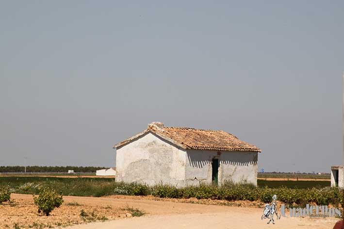 Casa de Campo Tomelloso